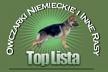 Top Lista Owczarki Niemieckie i Inne Rasy